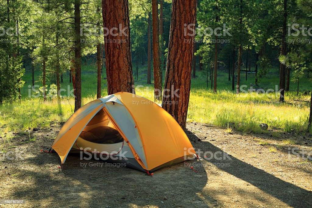 Tent Camping stock photo