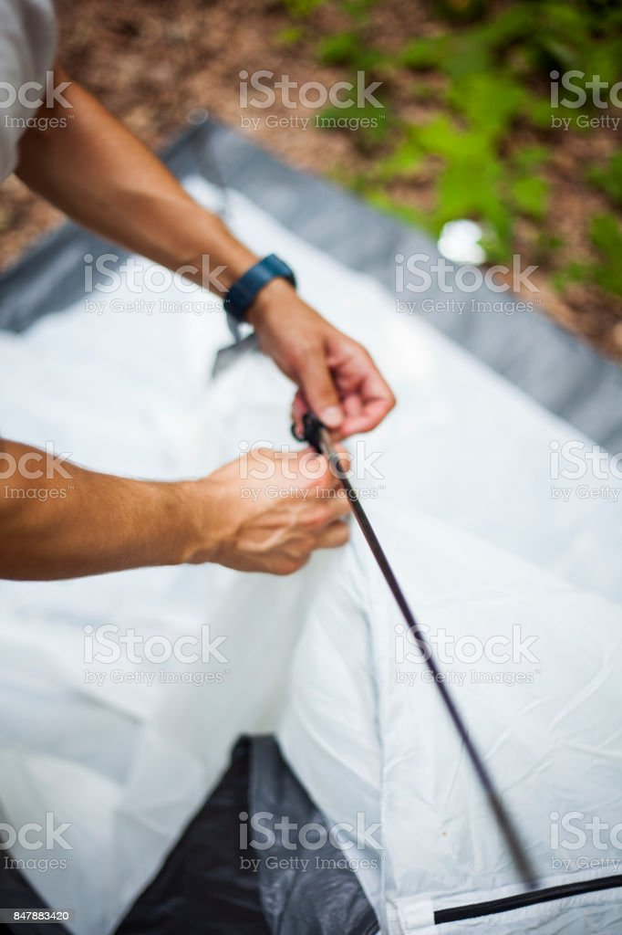 tent installation, nature, preparation, camp stock photo