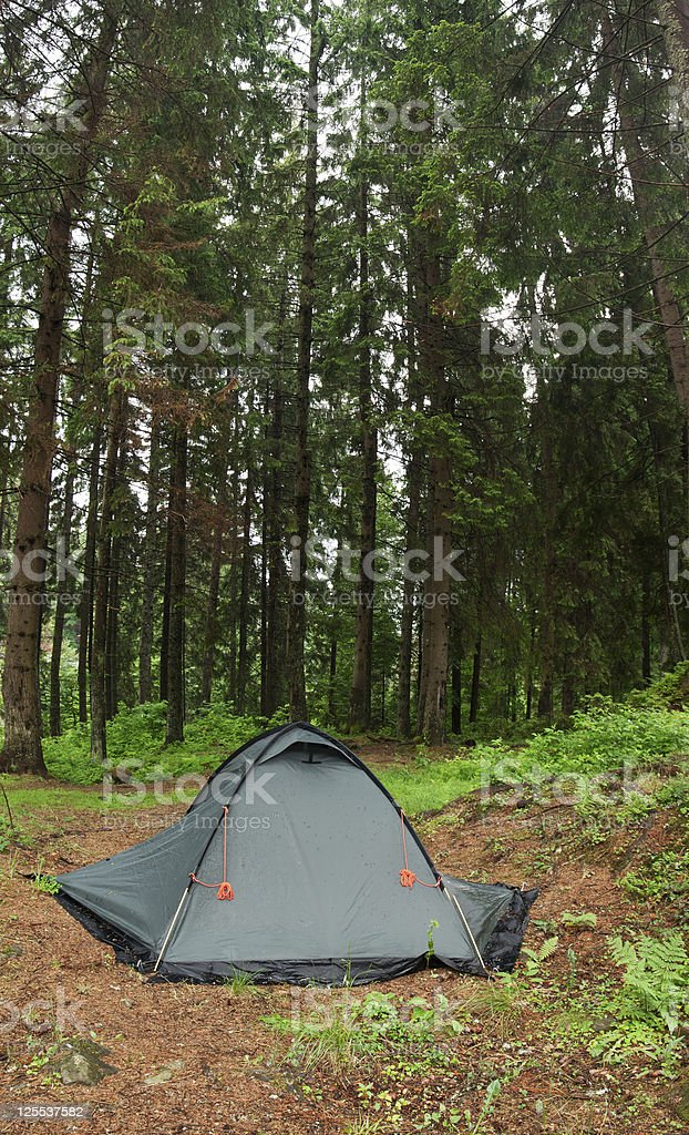 Tent nestled in early morning wilderness campsite.  XXL size. stock photo