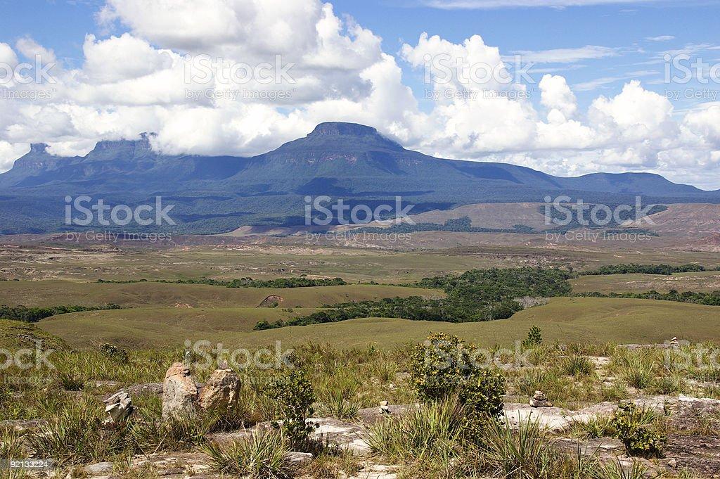 Tepui in Gran Sabana royalty-free stock photo