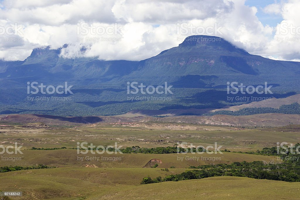 Tepui in Venezuela royalty-free stock photo