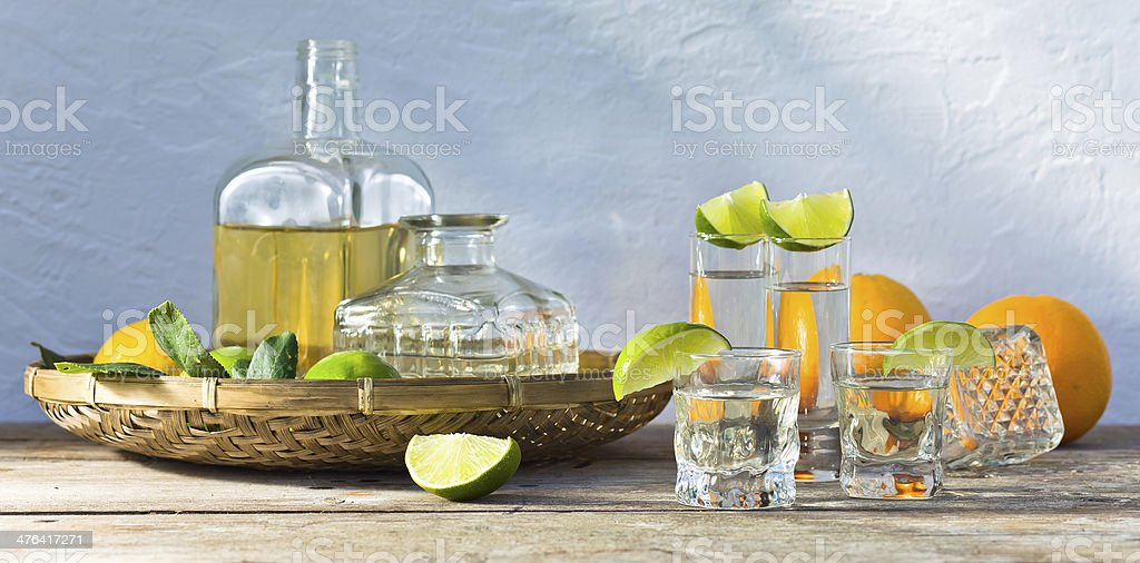 tequila and citrus fruits royalty-free stock photo