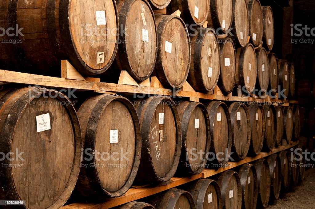 Tequila to process mature stock photo