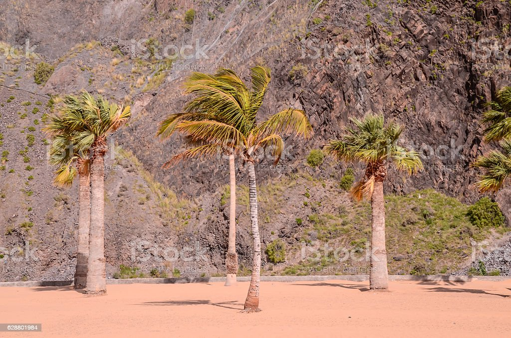 Teresitas Beach in Tenerife stock photo