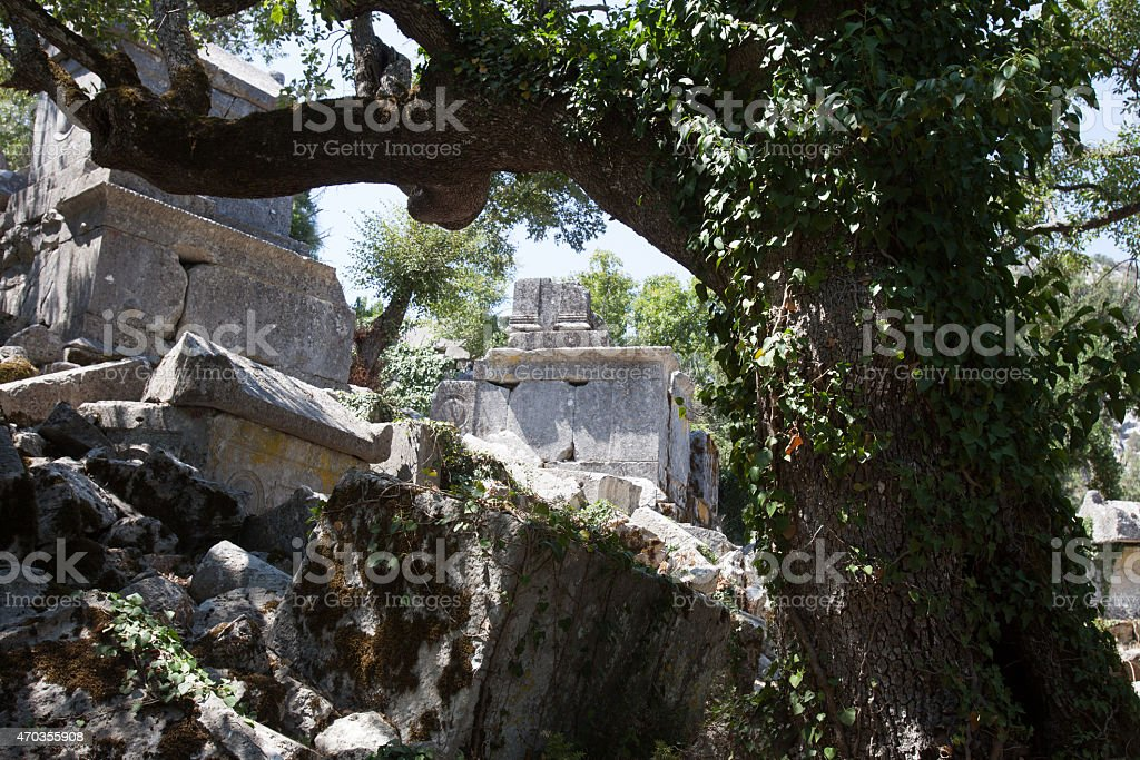 Termessos stock photo