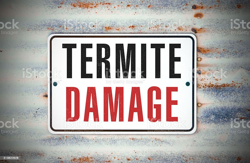 Termite Damage stock photo
