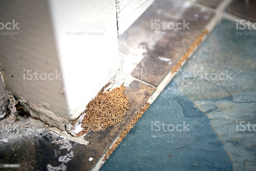 Termite Droppings from a Wooden Post stock photo