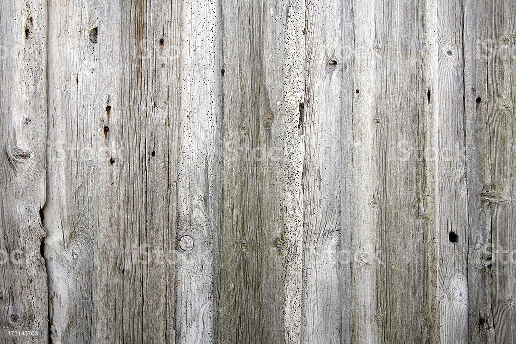 Termite eaten wall stock photo