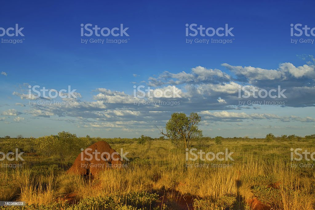 Termite mount in Outback stock photo