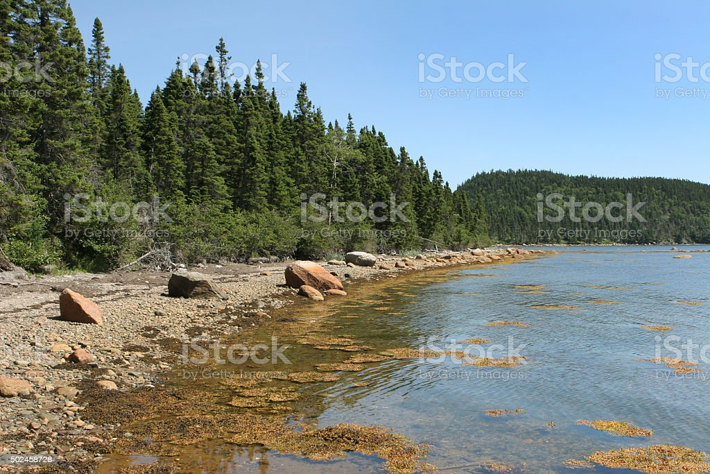 Terra Nova National Park lakes forests Newfoundland Canada stock photo