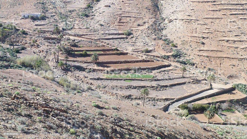 Terrace in the rock of fuerteventura stock photo