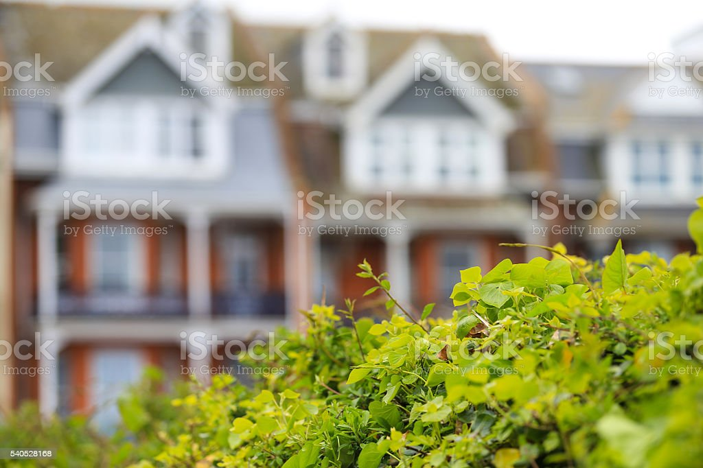 Terrace of houses in United Kingdom stock photo