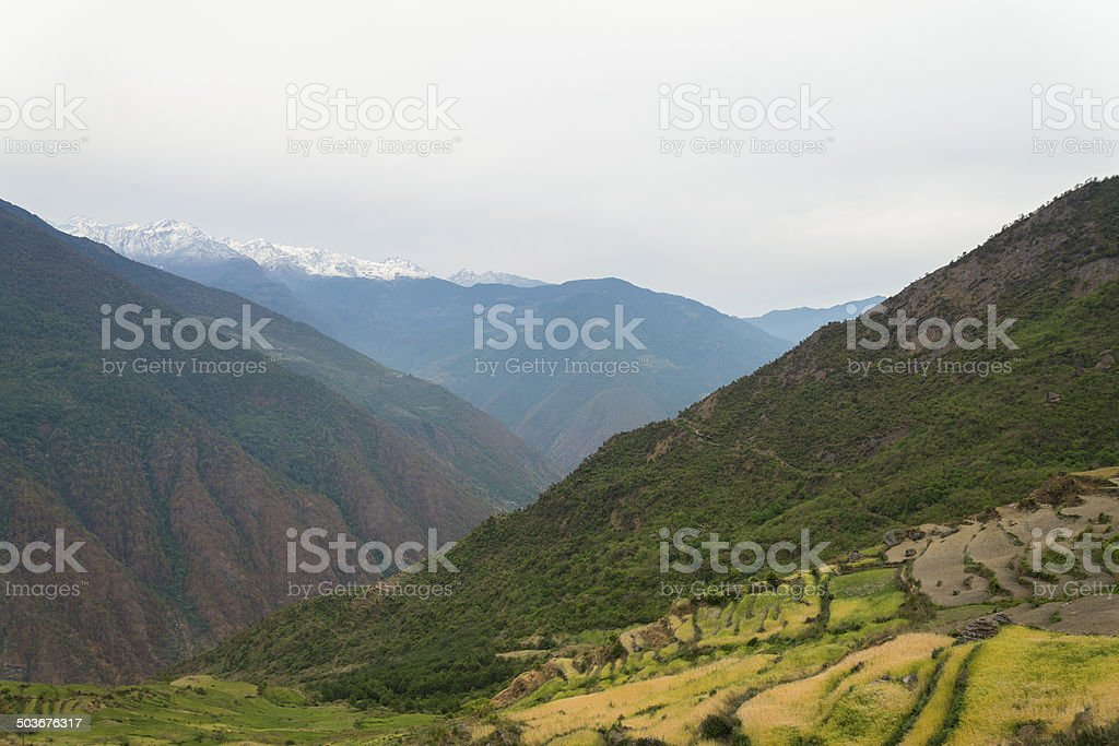 Terraced fields and snow montain range background stock photo