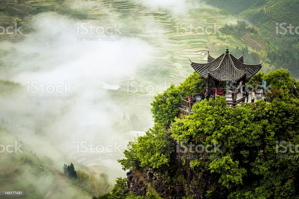 terraced fields stock photo