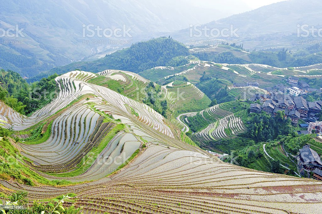 Terraced landscape in China stock photo