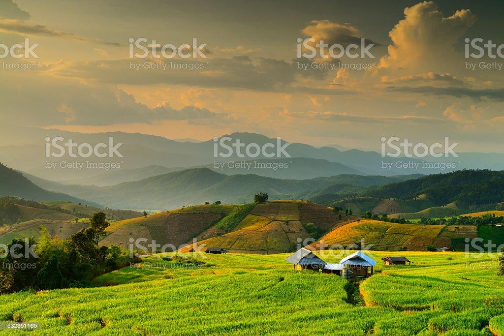 Terraced Rice Field , Mae Chaem, Chiang Mai, Thailand stock photo