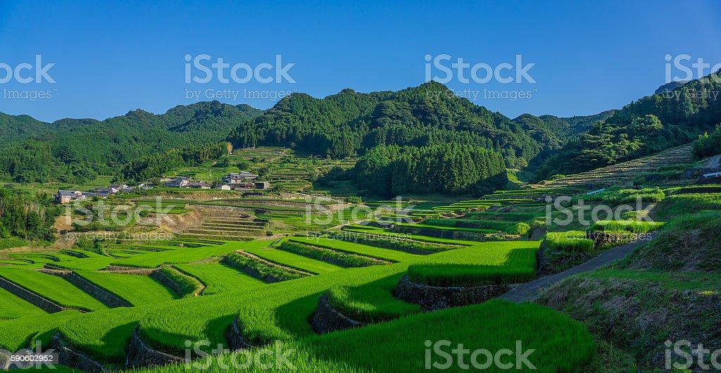 terraced rice-fields in Hasami, Nagasaki, Japan. stock photo
