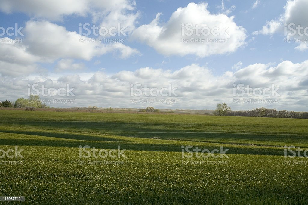 Terraces & Clouds royalty-free stock photo