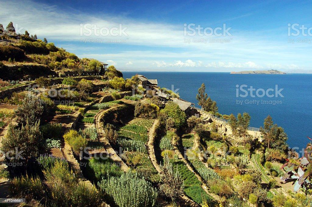 Terraces of Isla Del Sol stock photo