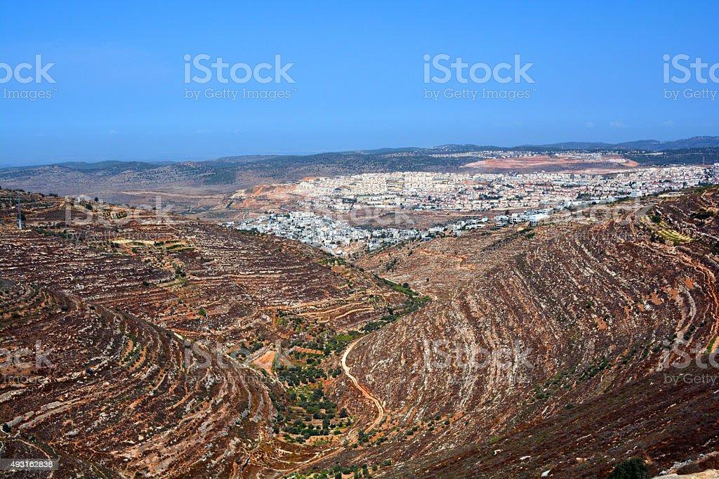 Terraces of Israel 2 stock photo