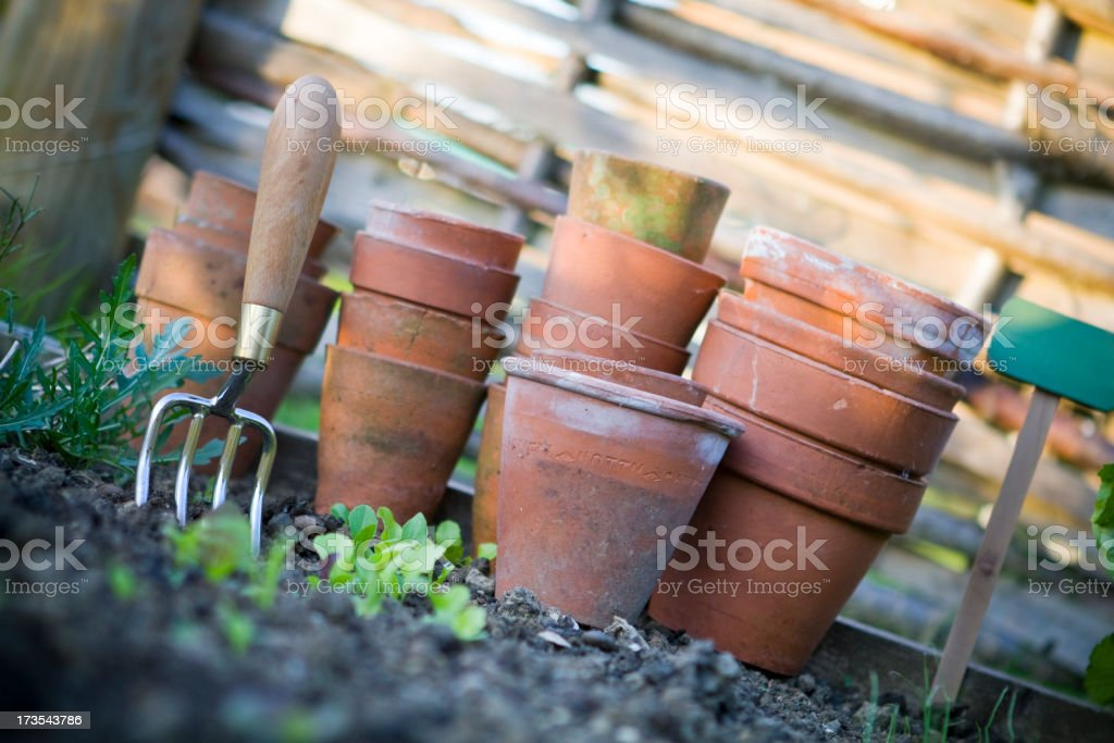 Terracotta Pots in the Vegetable Patch royalty-free stock photo
