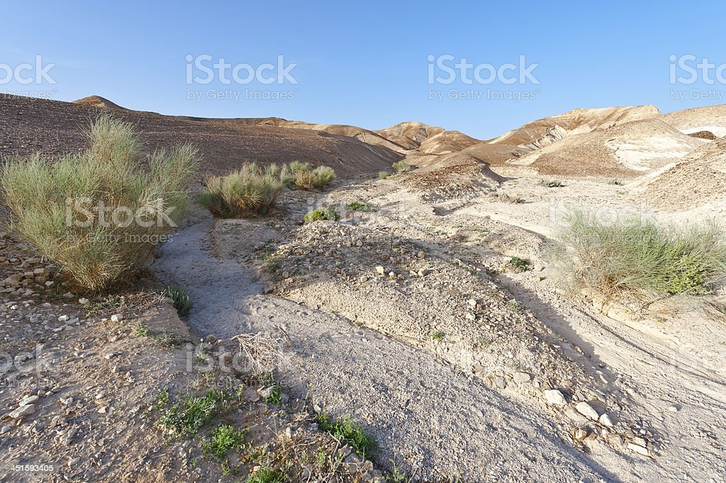 Terrain royalty-free stock photo