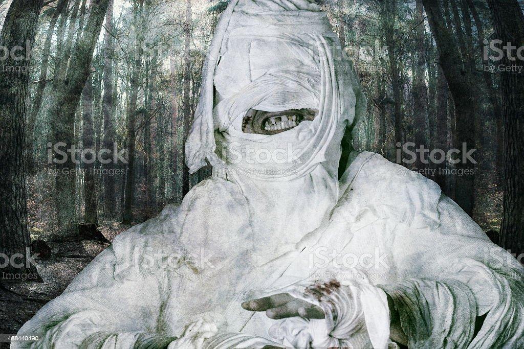 terrible mummy stock photo