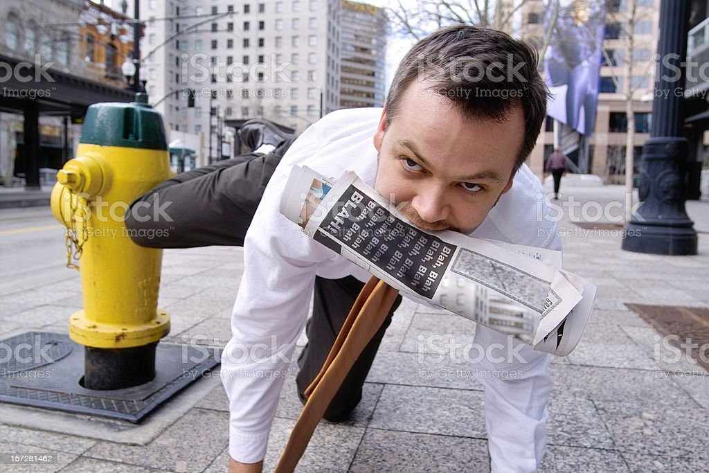 Territorial Business Man royalty-free stock photo