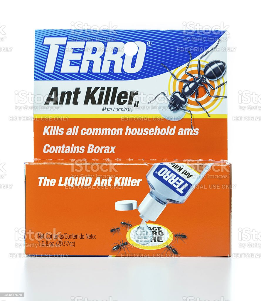 Terro ant killer box stock photo