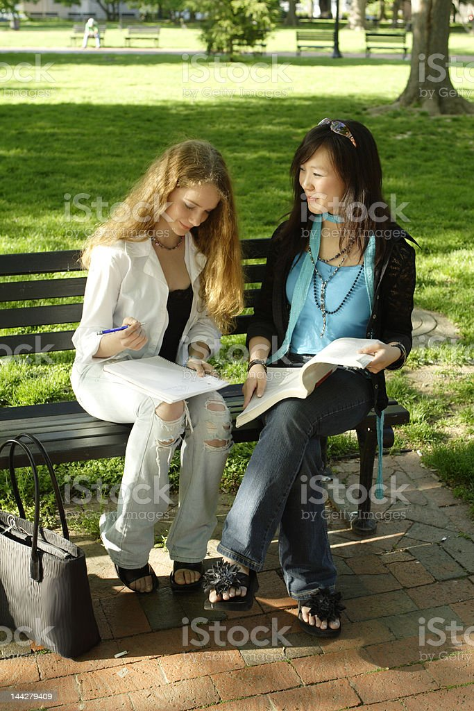 Test Preparation Two Young Woman Studying on Park Bench royalty-free stock photo