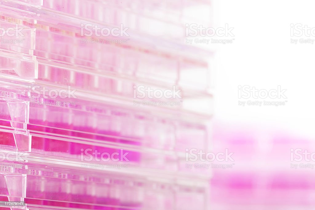 test tube in laboratory royalty-free stock photo