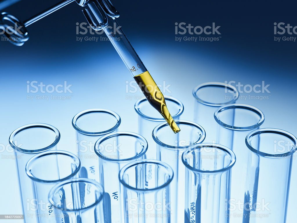 Test tube rack in a laboratory royalty-free stock photo
