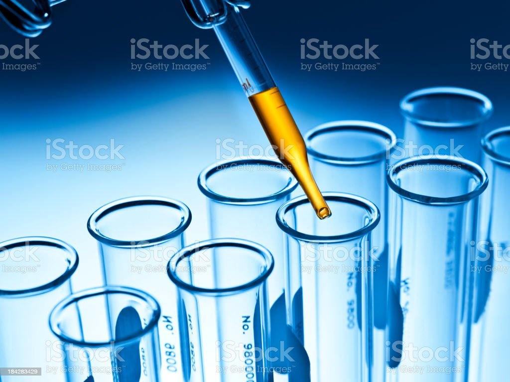 Test tube rack in a laboratory stock photo