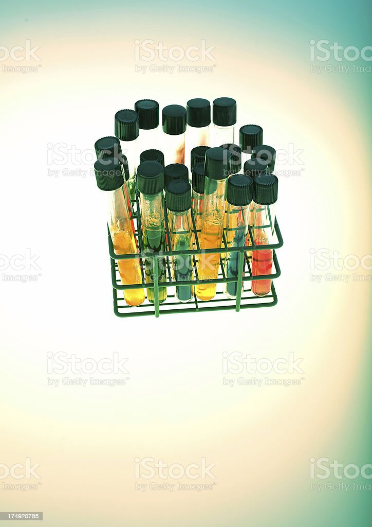 Test tubes in holder royalty-free stock photo