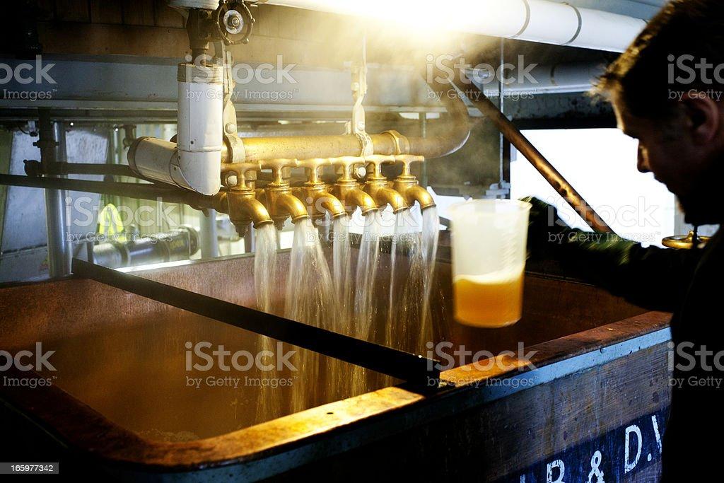 Testing beer royalty-free stock photo