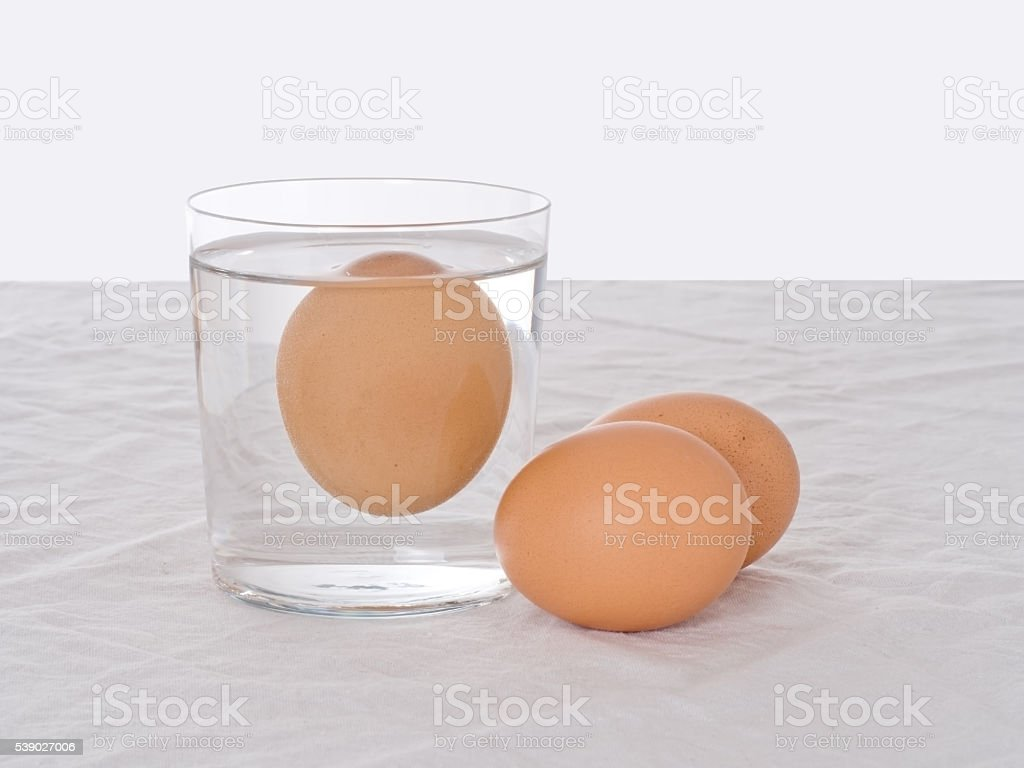 Testing fresh eggs. Rotten one, floating in water. Salmonella risk. stock photo