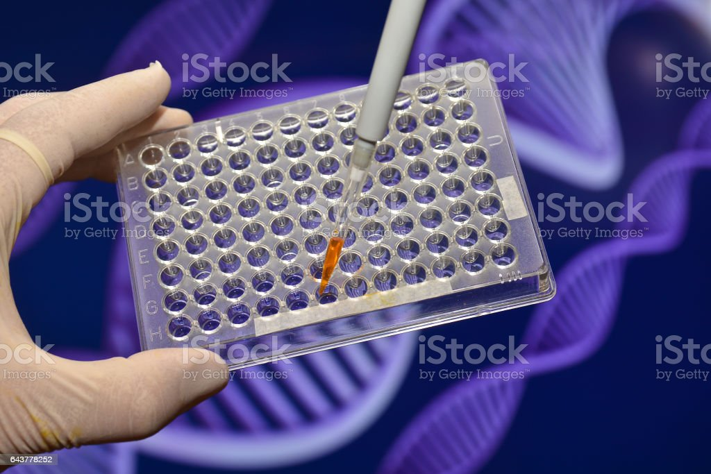 DNA testing in the laboratory. stock photo