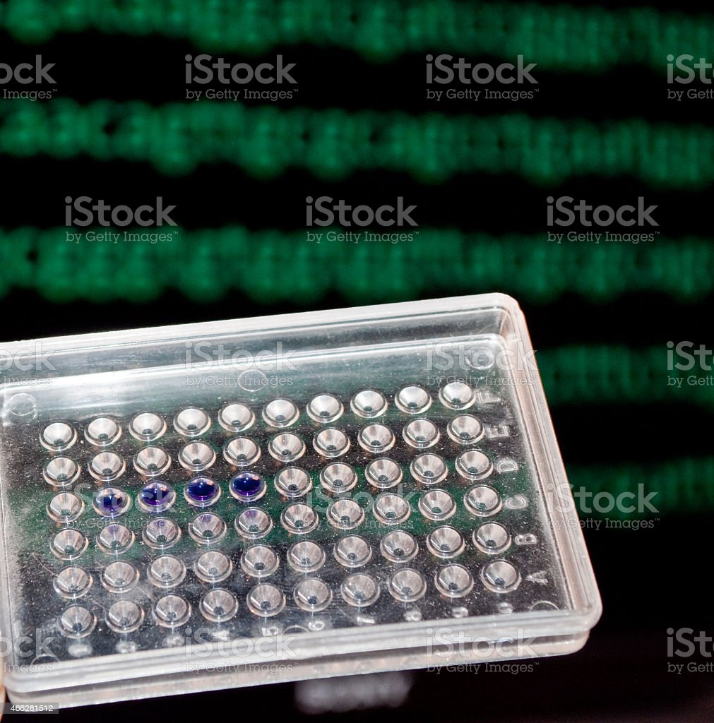 DNA testing. stock photo