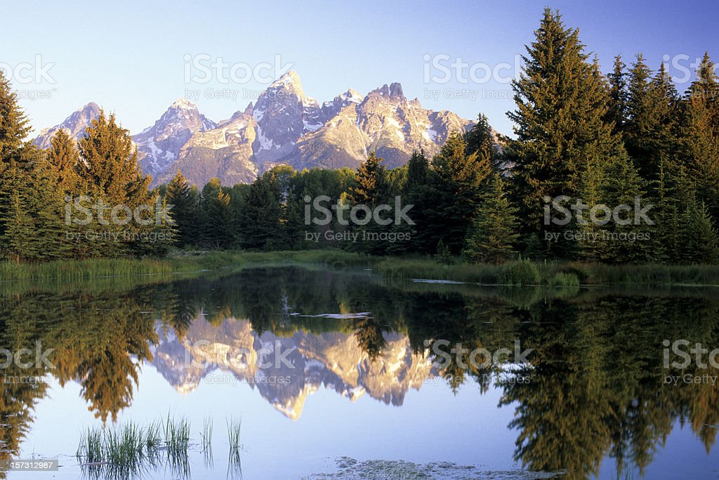 Teton Reflectin at Sunrise royalty-free stock photo
