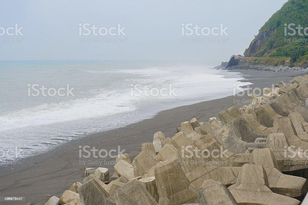 tetrapod stock photo