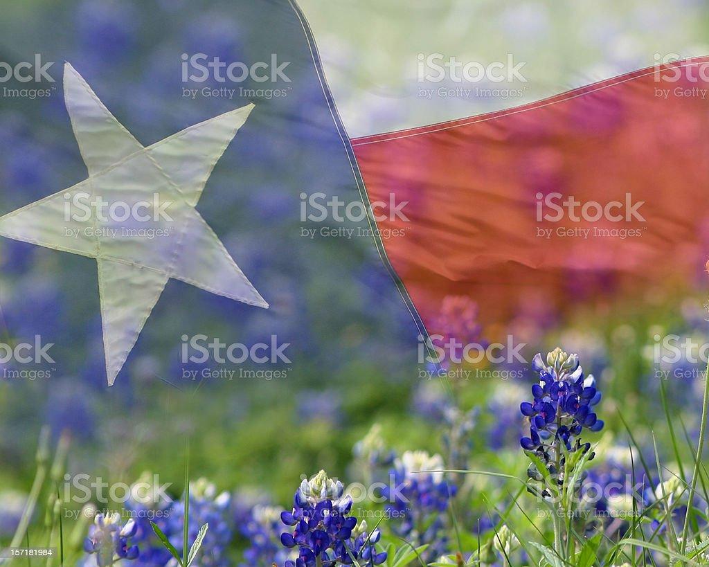 Texas Flag overlaid on Bluebonnets stock photo