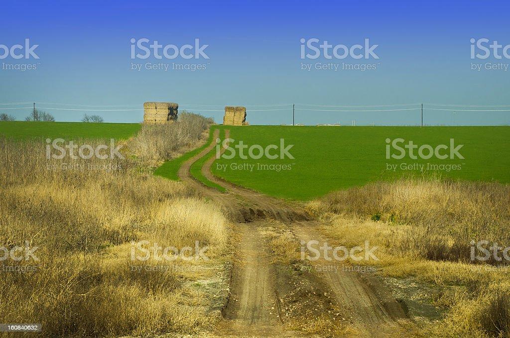 texas hay stock photo
