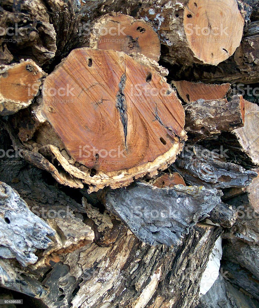 Texas Mesquite Wood royalty-free stock photo