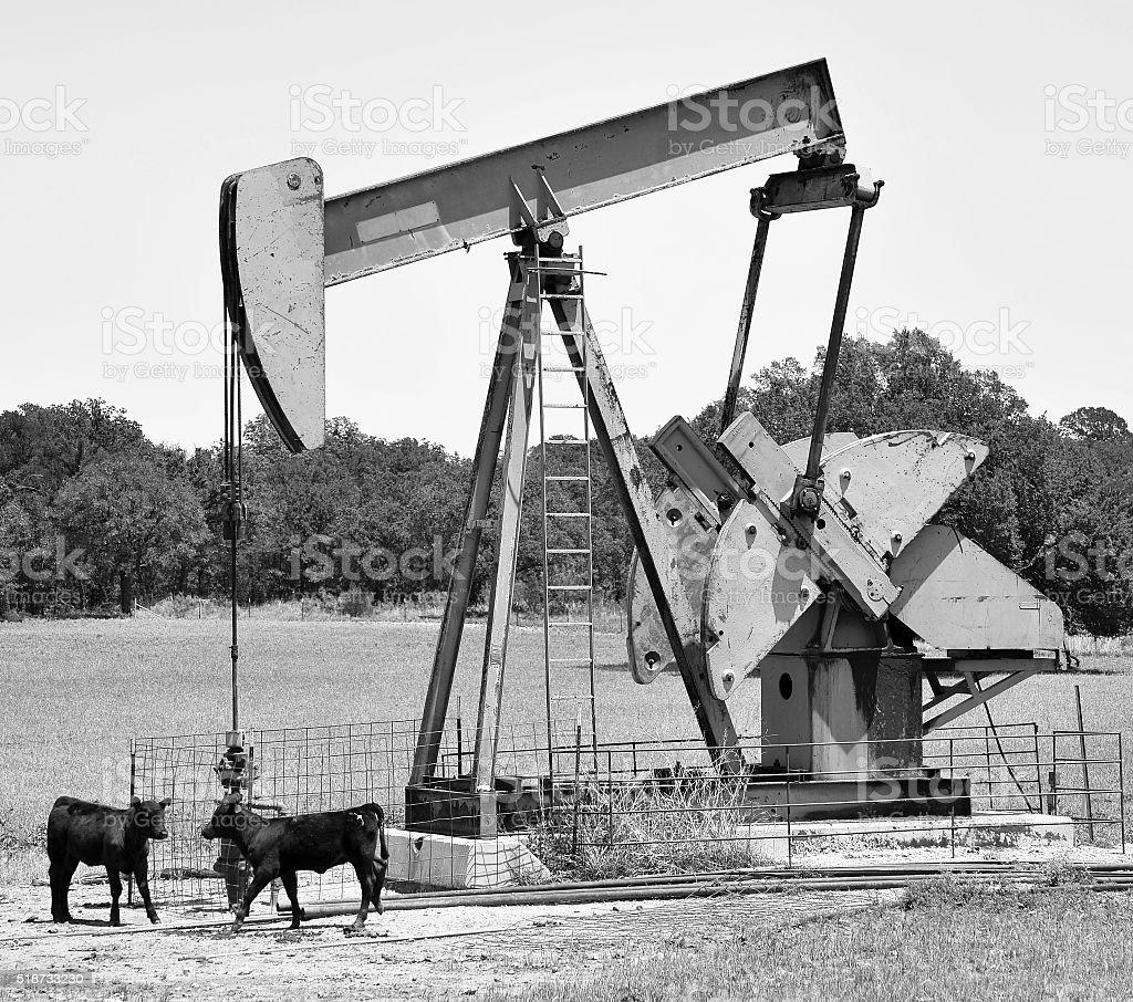 Texas oil well pumper. stock photo