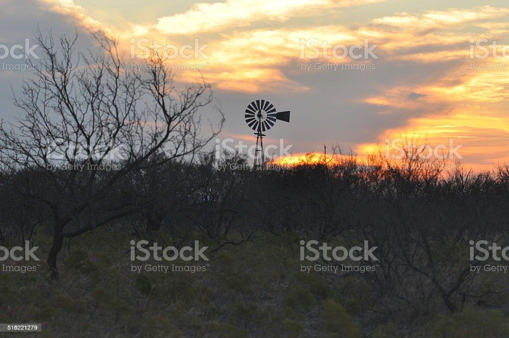 Texas Molino de viento en la puesta de sol sobre el Mesquite foto de stock libre de derechos