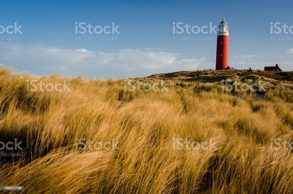 Texel Leuchtturm Eierland stock photo