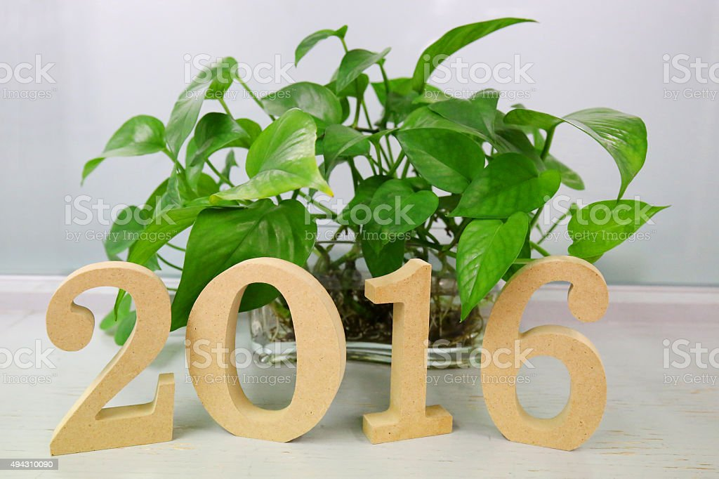 text 2016 on plank wood and plant background stock photo