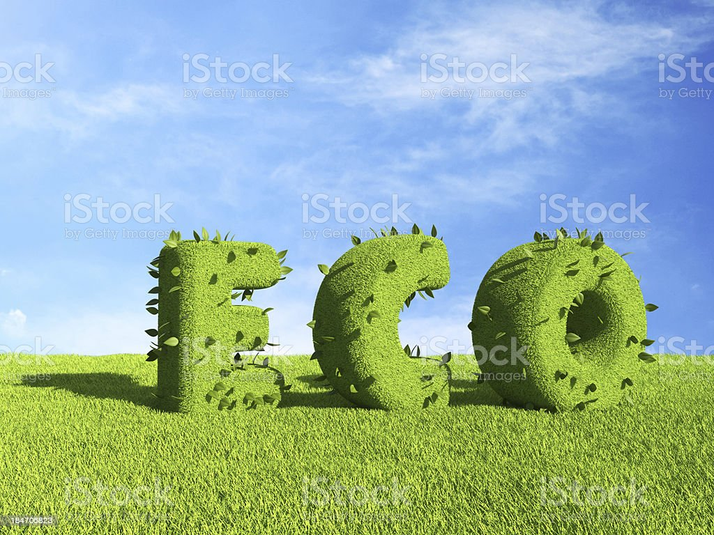 ECO text  on grass field. Ecology concept 3D royalty-free stock photo