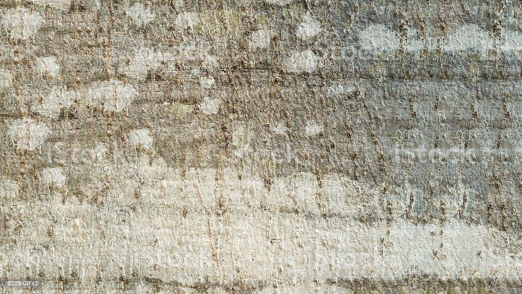 Textur Hintergrund Lizenzfreies stock-foto