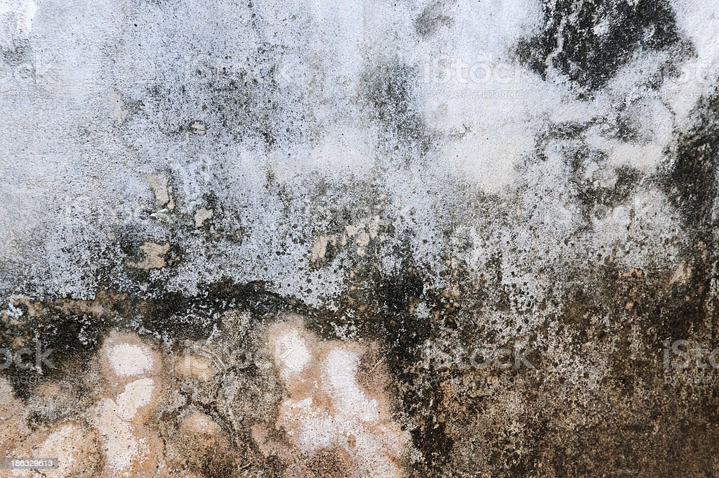 Texture from old rough grunge royalty-free stock photo